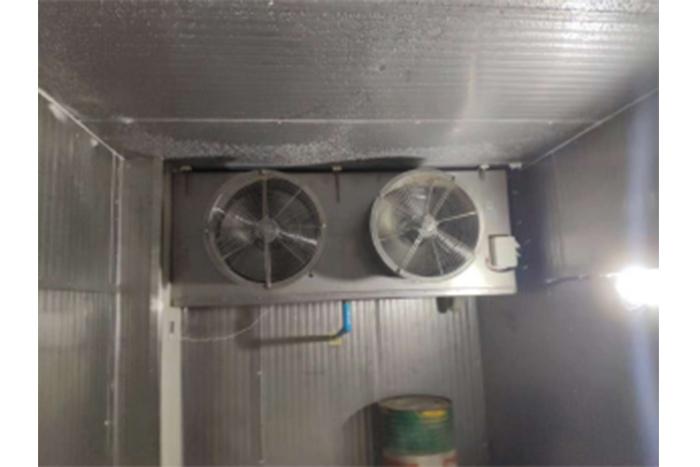 2000kg Tuna FishBlast Cold Room