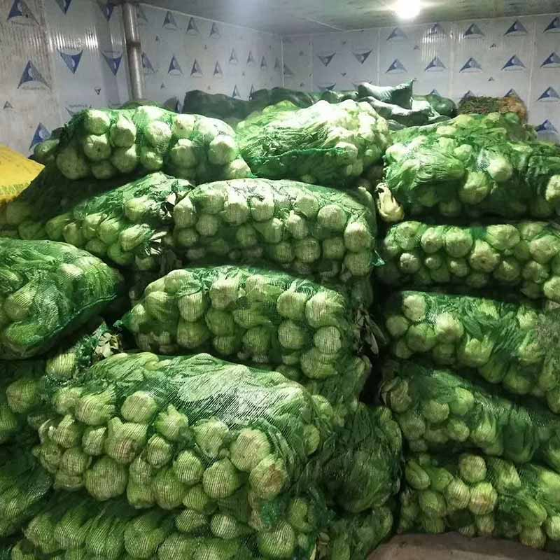 Vegetable Cold Room